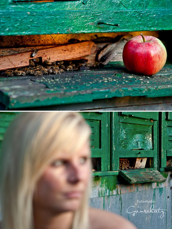 imkerei uckermark grinsekatz fotograf grinsekatz