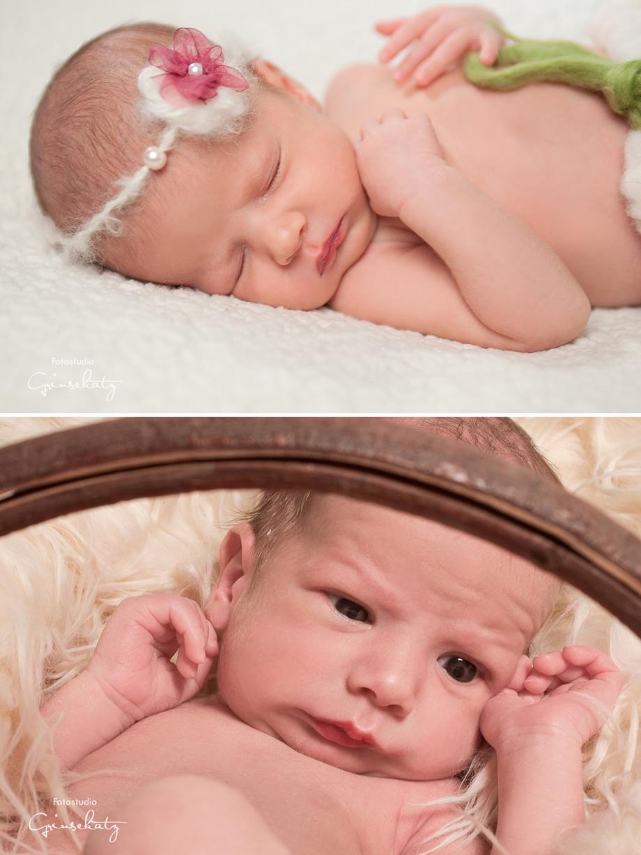 neugeborene zwillinge neugeborenenfotgrafie templin